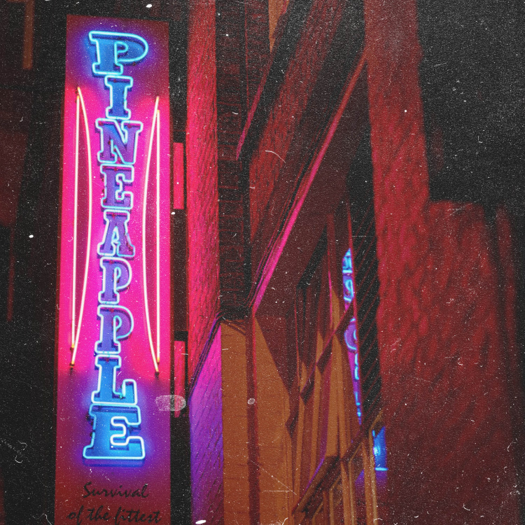 Pineapple studios illuminated sign